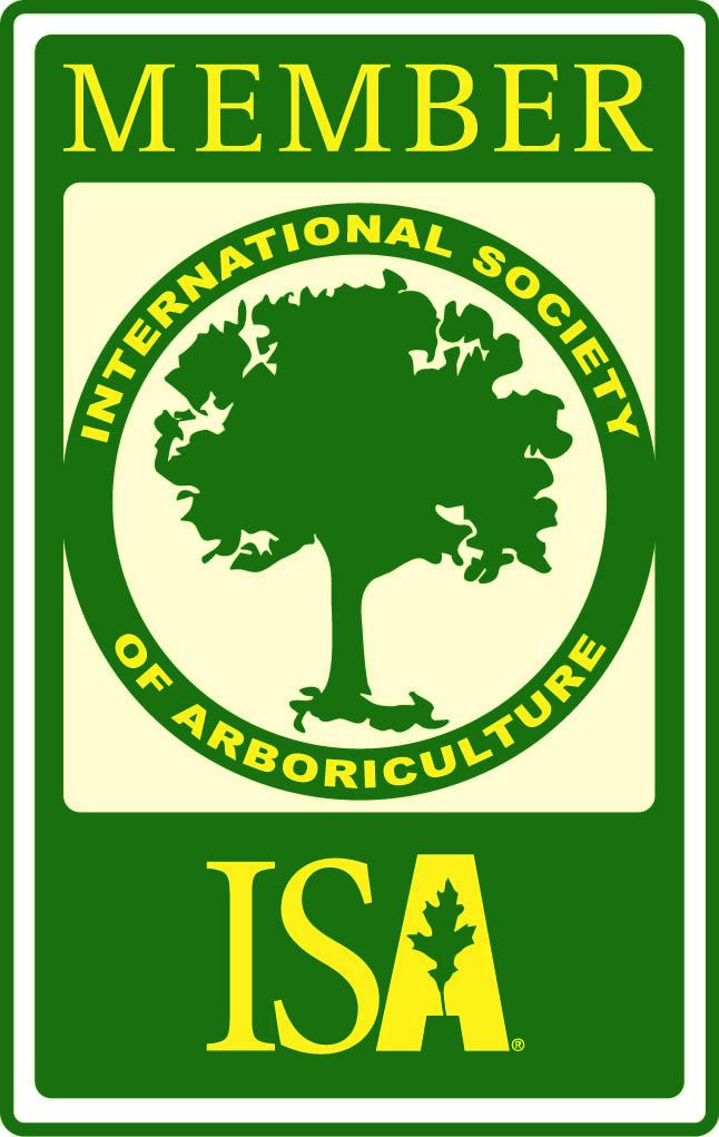 ISA members [Converted]